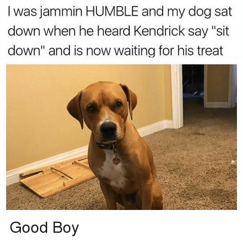 "Dank, Good, and Humble: I was jammin HUMBLE and my dog sat  down when he heard Kendrick say ""sit  down"" and is now waiting for his treat Good Boy"