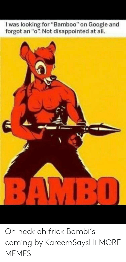 """Bambi, Dank, and Disappointed: I was looking for """"Bamboo"""" on Google and  forgot an """"o"""". Not disappointed at all.  BAMBO Oh heck oh frick Bambi's coming by KareemSaysHi MORE MEMES"""
