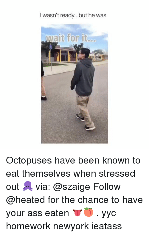 Ass, Memes, and Homework: I wasn't ready...but he was  wait for it. Octopuses have been known to eat themselves when stressed out 🐙 via: @szaige Follow @heated for the chance to have your ass eaten 👅🍑 . yyc homework newyork ieatass