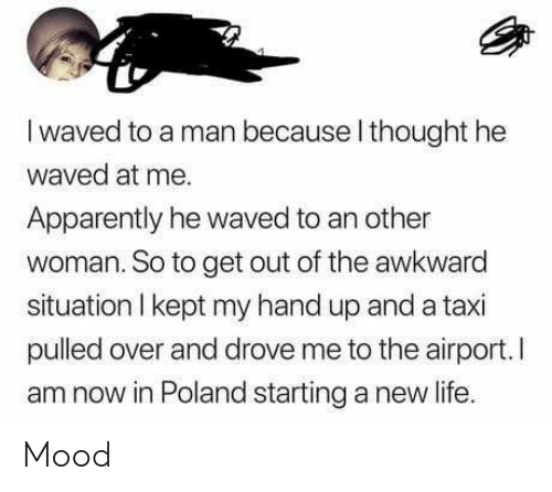 Apparently, Life, and Mood: I waved to a man because l thought he  waved at me.  Apparently he waved to an other  woman. So to get out of the awkward  situation I kept my hand up and a taxi  pulled over and drove me to the airport.I  am now in Poland starting a new life. Mood