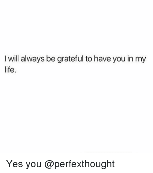 I Will Always Be Grateful To Have You In My Life Yes You Life Meme