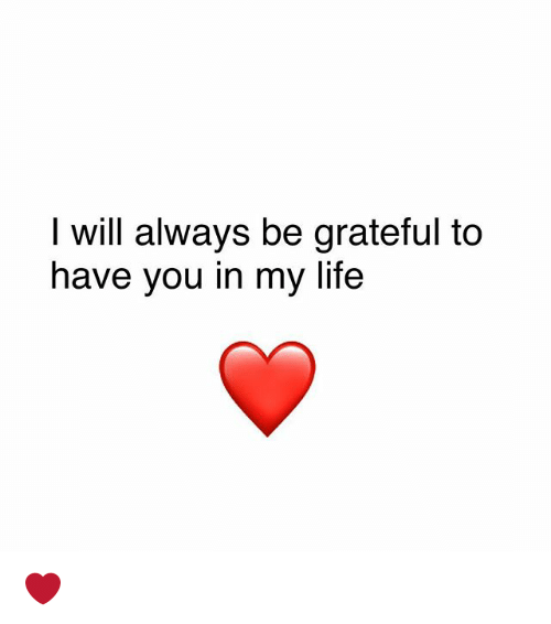 I Will Always Be Grateful To Have You In My Life Life Meme On