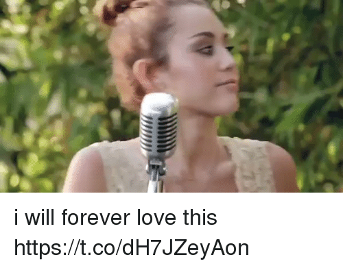 Funny, Love, and Forever: i will forever love this https://t.co/dH7JZeyAon