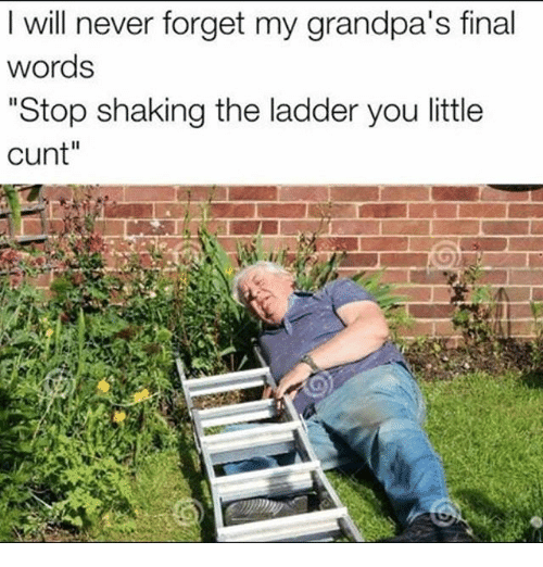 "Memes, 🤖, and The Ladders: I will never forget my grandpa's final  words  ""Stop shaking the ladder you little  cunt"""