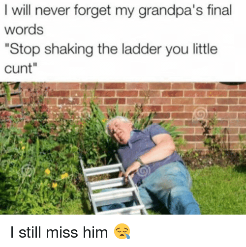 "Finals, Memes, and Grandpa: I will never forget my grandpa's final  words  ""Stop shaking the ladder you little  cunt"" I still miss him 😪"