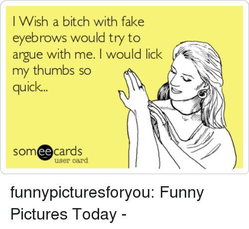 Arguing, Bitch, and Fake: I Wish a bitch with fake  eyebrows would try to  argue with me. I would lick  my thumbs so  quick  somee cards  user card funnypicturesforyou:  Funny Pictures Today -