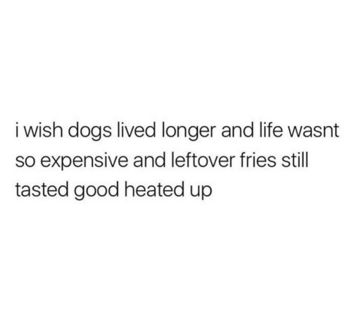 Dogs, Life, and Good: i wish dogs lived longer and life wasnt  so expensive and leftover fries still  tasted good heated up