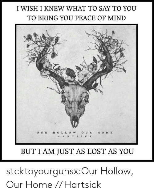 Tumblr, Lost, and Blog: I WISH I KNEW WHAT TO SAY TO YOU  TO BRING YOU PEACE OF MIND  O UR H O LL OWO U R H O M E  H ART S IC K  BUT I AM JUST AS LOST AS YOU stcktoyourgunsx:Our Hollow, Our Home // Hartsick