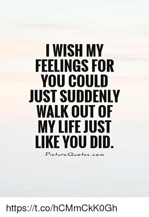 I Wish My Feelings For You Could Just Suddenly Walk Out Of My Life