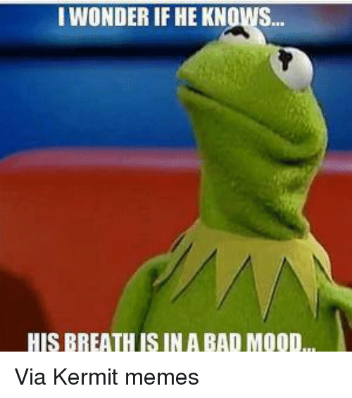 Bad, Kermit the Frog, and Meme: I WONDER IF HEKNOWS.  HIS BREATHIS IN A BAD MOOD Via Kermit memes