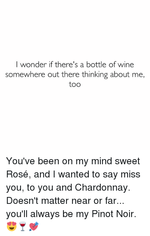 Memes, 🤖, and Roses: I wonder if there's a bottle of wine  somewhere out there thinking about me,  too You've been on my mind sweet Rosé, and I wanted to say miss you, to you and Chardonnay. Doesn't matter near or far... you'll always be my Pinot Noir. 😍🍷💘