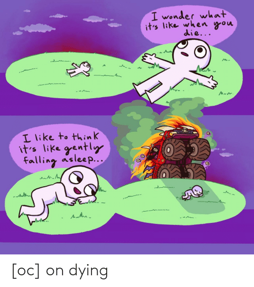 Wonder, Think, and You: I wonder what  it's like when you  die...  I like to think  it's like gently  falling asleep... [oc] on dying