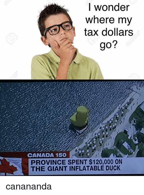 Memes, Canada, and Duck: I wonder  where my  tax dollars  go?  CANADA 150  PROVINCE SPENT $120,000 ON  THE GIANT INFLATABLE DUCK canananda