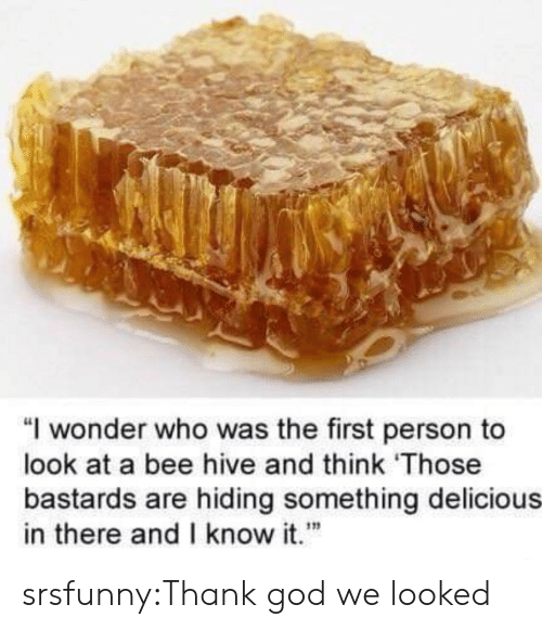 "God, Tumblr, and Blog: ""I wonder who was the first person to  look at a bee hive and think Those  bastards are hiding something delicious  in there andI know it""  เท srsfunny:Thank god we looked"