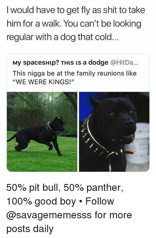 "Anaconda, Family, and Memes: I would have to get fly as shit to take  him for a walk. You can't be looking  regular with a dog that cold..  My spacesHip? THiS is a dodge @HitDa...  This nigga be at the family reunions like  ""WE WERE KINGS!"" 50% pit bull, 50% panther, 100% good boy • Follow @savagememesss for more posts daily"
