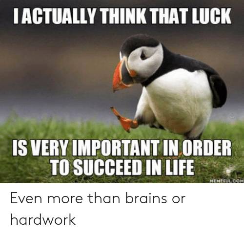 Brains, Life, and Luck: IACTUALLY THINK THAT LUCK  IS VERY IMPORTANT IN ORDER  TO SUCCEED IN LIFE  MepTEMEFUL COM Even more than brains or hardwork