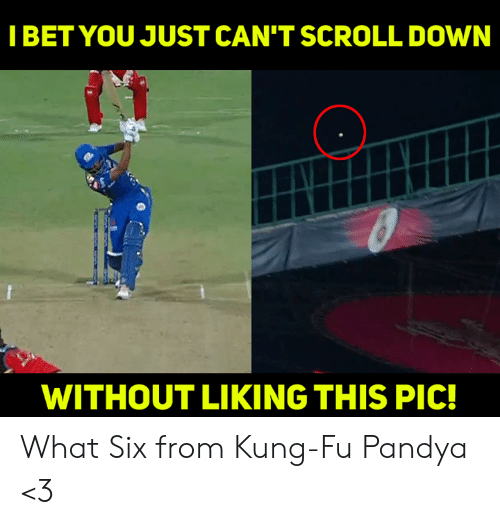 Memes, 🤖, and Kung Fu: IBET YOU JUST CAN'T SCROLL DOWN  WITHOUT LIKING THIS PIC! What Six from Kung-Fu Pandya <3