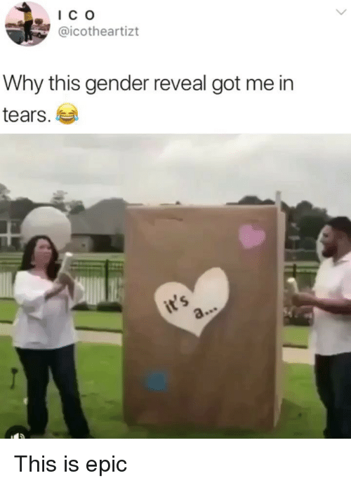 Memes, 🤖, and Got: IC o  @icotheartizt  Why this gender reveal got me in  tears.  ㄣ This is epic