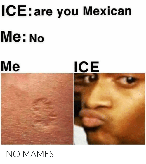Memes, Mexican, and 🤖: ICE:are you Mexican  Me: No  Me  ICE NO MAMES
