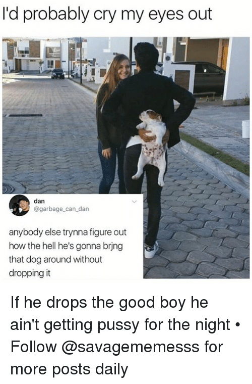 Memes, Pussy, and Good: I'd probably cry my eyes out  dan  @garbage_can_dan  anybody else trynna figure out  how the hell he's gonna brjng  that dog around without  dropping it If he drops the good boy he ain't getting pussy for the night • Follow @savagememesss for more posts daily