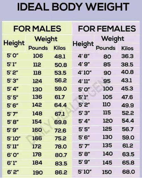 Ideal Body Weight For Males For Females Weight Height Weight Pounds