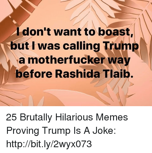 Memes, Http, and Trump: Idon't want to boast,  but I was calling Trump  a motherfucker way  before Rashida Tlaib. 25 Brutally Hilarious Memes Proving Trump Is A Joke: http://bit.ly/2wyx073