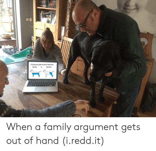 Family, Dog, and Them: If a dog wore pants would he wear them  like this  or  ike this? When a family argument gets out of hand (i.redd.it)
