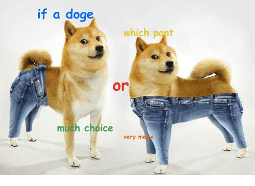 if a doge which pant or much choice werd doge meme on