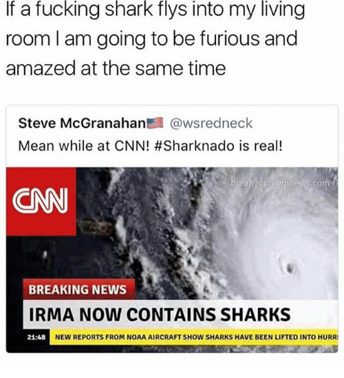 cnn.com, Fucking, and Memes: If a fucking shark flys into my living  room l am going to be furious and  amazed at the same time  Steve McGranahan髫@wsredneck  Mean while at CNN! #Sharknado is real!  .com  CNN  BREAKING NEWS  IRMA NOW CONTAINS SHARKS  NEW REPORTS FROM NOAA AIRCRAFT SHOW SHARKS HAVE BEEN LIFTED INTO HURRI