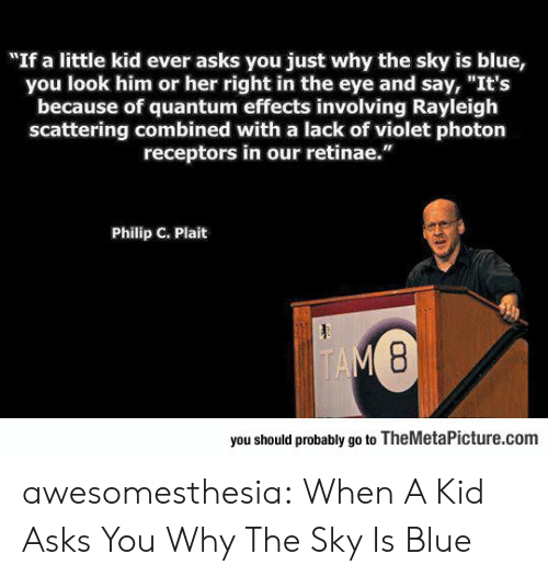 """Tumblr, Blog, and Blue: """"If a little kid ever asks you just why the sky is blue,  you look him or her right in the eye and say, """"It's  because of quantum effects involving Rayleigh  scattering combined with a lack of violet photon  receptors in our retinae.""""  Philip C. Plait  TAM 8  you should probably go to TheMetaPicture.com awesomesthesia:  When A Kid Asks You Why The Sky Is Blue"""