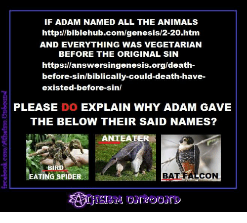 If ADAM NAMED ALL THE ANIMALS Httpbiblehubcomgenesis2-20htm