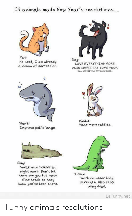Animals, Definitely, and Funny: If animals made New Year's resolutions.  Cat  No need, I am already  a vision of perfection  Dog  LOVE EVERYTHING MORE.  ALSO MAYBE EAT SOME POOP  LL DEFİNITELY EAT SOME POOP-  Shark  Improve public image,  Rabbit:  Make more rabbits.  0s  Slug  Sneak into houses at  night more, Don't let  them see you but leave  slime trails so they  know you've been there.  T-Rex  Work on upper body  strength. Also stop  being dead.  LeFunny.net Funny animals resolutions