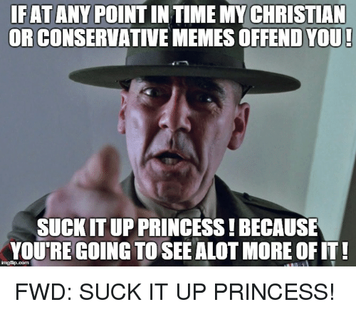 Memes, Princess, and Conservative: IF ATANY  POINTINTIME MY CHRISTIAN  OR CONSERVATIVE MEMES OFFENDYOU!  SUCKIT UP PRINCESS!BECAUSE  YOURE GOING TO SEEALOT MORE OFIT!  FWD: SUCK IT UP PRINCESS!