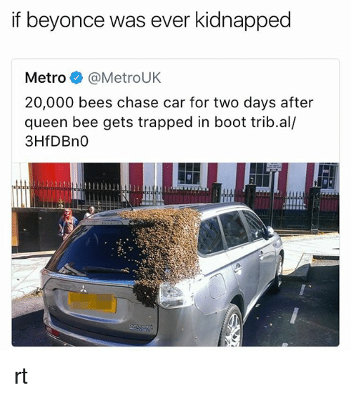Beyonce, Queen, and Chase: if beyonce was ever kidnapped  Metro @MetroUK  20,000 bees chase car for two days after  queen bee gets trapped in boot trib.al/  3HfDBn0 rt