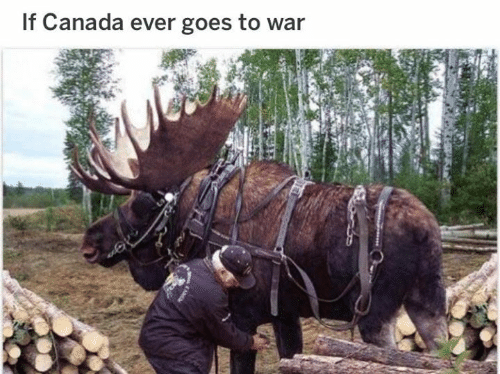 Dank, Canada, and 🤖: If Canada ever goes to war