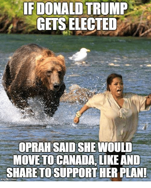 Memes, Canada, and Trump: IF DONALD TRUMP  GETS ELECTED  OPRAH SAIDSHEMIOULD  MOVE TO CANADA, LIKE AND  SHARE TO SUPPORT HER PLAN!