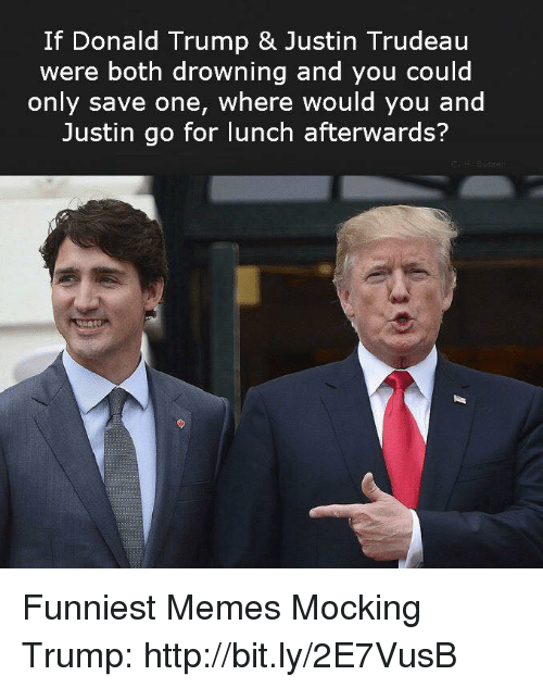 Donald Trump, Memes, and Http: If Donald Trump & Justin Trudeau  were both drowning and you could  only save one, where would you and  Justin go for lunch afterwards? Funniest Memes Mocking Trump: http://bit.ly/2E7VusB