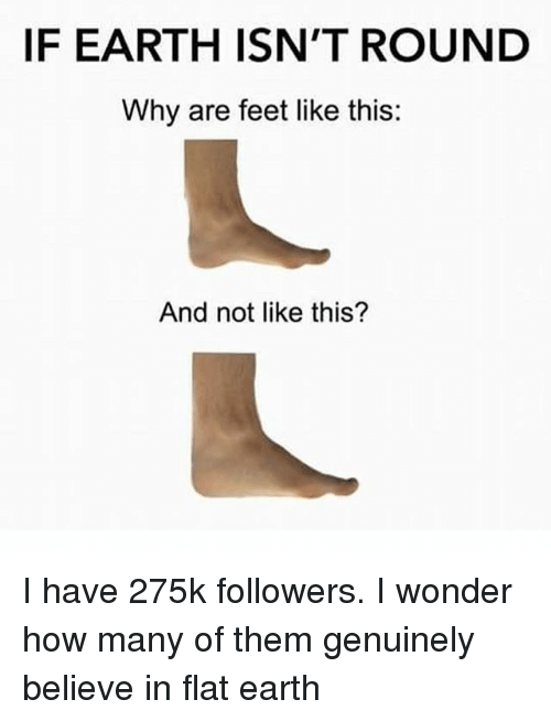 Earth, Dank Memes, and Flat Earth: IF EARTH ISN'T ROUND  Why are feet like this:  And not like this? I have 275k followers. I wonder how many of them genuinely believe in flat earth