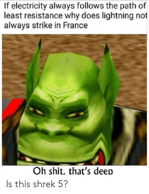 Shit, Shrek, and France: If electricity always follows the path of  least resistance why does lightning not  always strike in France  Oh shit, that's deep Is this shrek 5?