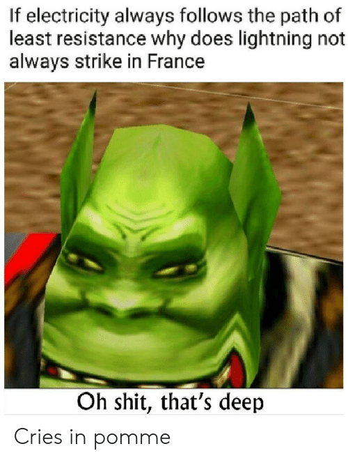 Shit, France, and History: If electricity always follows the path of  least resistance why does lightning not  always strike in France  Oh shit, that's deep Cries in pomme
