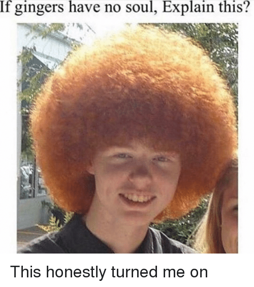 Memes, 🤖, and Ginger: If gingers have no soul, Explain this? This honestly turned me on