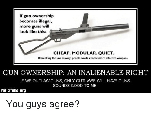 if gun ownership becomes illegal more guns will look like this cheap