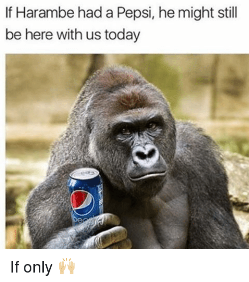 Memes, Pepsi, and Today: If Harambe had a Pepsi, he might still  be here with us today If only 🙌🏼