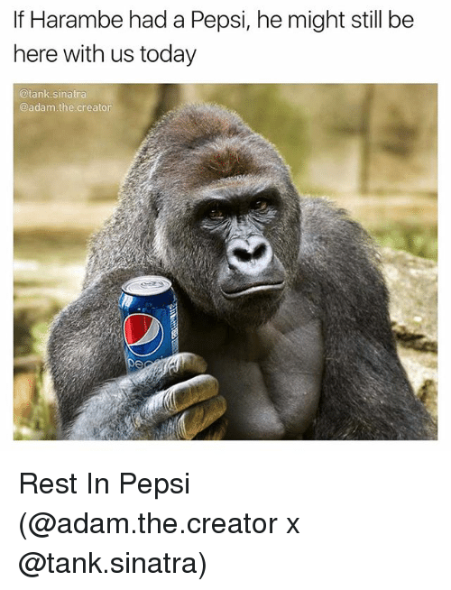 Funny, Pepsi, and Today: If Harambe had a Pepsi, he might still be  here with us today  @tank Sinatra  @adam the creator Rest In Pepsi (@adam.the.creator x @tank.sinatra)