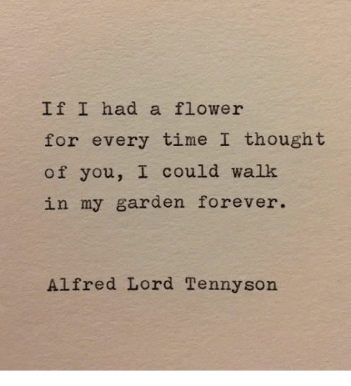 Flower, Forever, and Time: If I had a flower  for every time I thought  of you, I could walk  in my garden forever.  Alfred Lord Tennyson