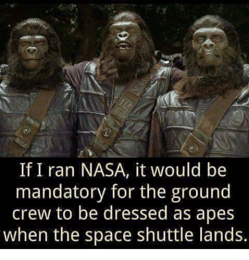 [Image: if-i-ran-nasa-it-would-be-mandatory-for-...146600.png]