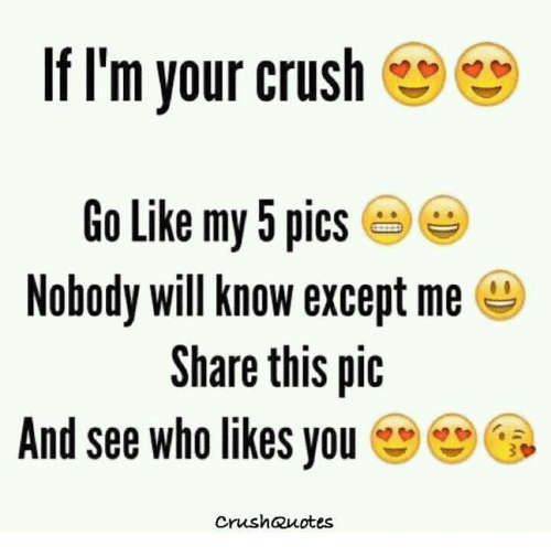 if i m your crush go like my 5 pics nobody will know except me share