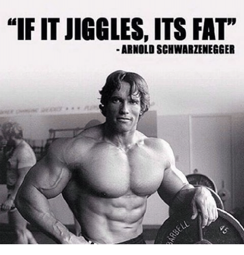 arnold schwarzenegger memes and if it jiggles its fat
