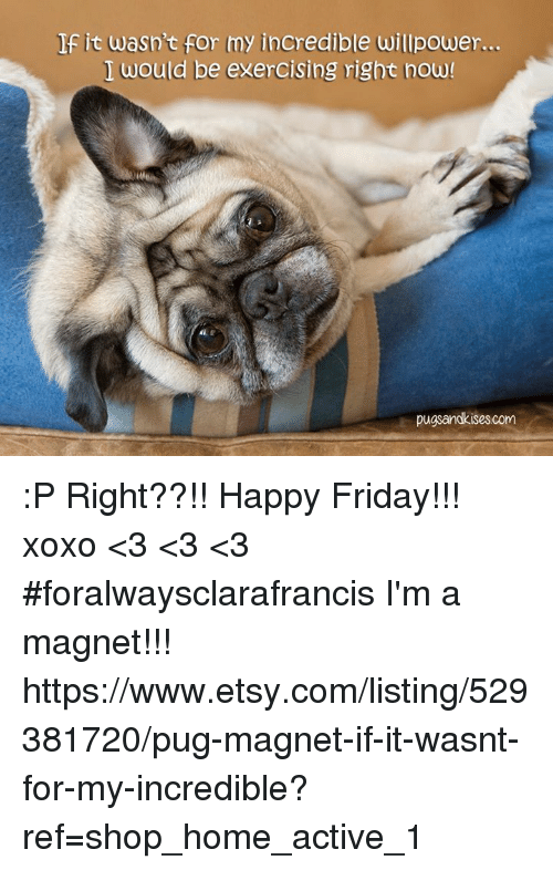 Friday, Memes, and Etsy: If it wasn't for my incredible willpower...  I would be exercising right now  pugsandkises.com :P Right??!! Happy Friday!!! xoxo <3 <3 <3 #foralwaysclarafrancis I'm a magnet!!! https://www.etsy.com/listing/529381720/pug-magnet-if-it-wasnt-for-my-incredible?ref=shop_home_active_1