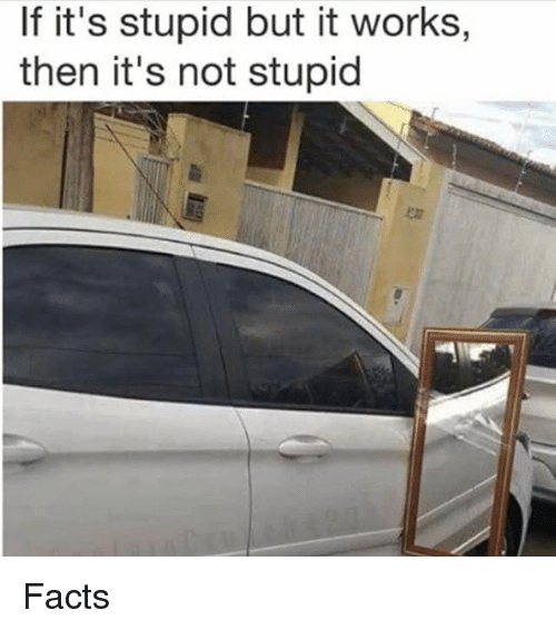 Facts, Memes, and 🤖: If it's stupid but it works,  then it's not stupid Facts